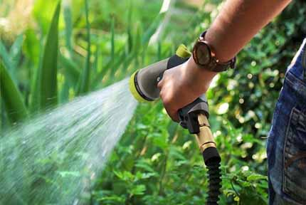 best expandable garden hose 2018